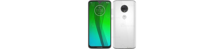 لوازم جانبی گوشی موتورولا Motorola Moto G7